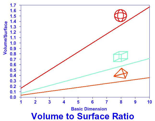 Building shape surface area to volume ratio ccuart Choice Image